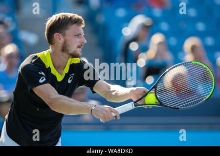 Mason, Ohio, USA. 18th Aug, 2019. David Goffin, (BEL) prepares to serve during the Men's Final of the Western and Southern Open at the Lindner Family Tennis Center, Mason, Oh. Credit: Scott Stuart/ZUMA Wire/Alamy Live News - Stock Photo