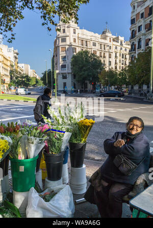 A flower seller on the corner of Alonso Martinez and the Calle de Genova, central Madrid, Spain - Stock Photo