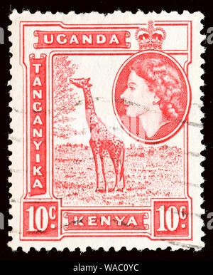 British East Africa (Kenya, Uganda and Tanganyika) Postage Stamp - 1954 - Stock Photo