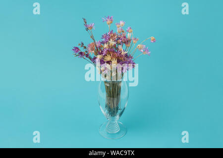 Beautiful bouquet of dried cornflowers in a glass vase on a turquoise background - Stock Photo