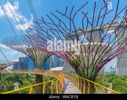 The OCBC Skyway, an aerial walkway in the Supertree Grove, looking towards Marina Bay Sands, Gardens by the Bay, Singapore City, Singapore