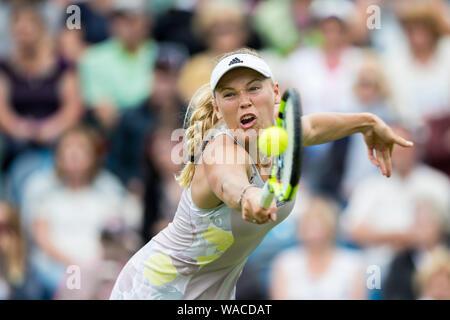 Caroline Wozniacki of Denmark playing single handed backhand shot against  Samantha Stosur of Australia at Aegon International 2016, Eastbourne, Engla - Stock Photo