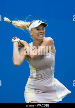 Aegon International 2016, Eastbourne, England - Caroline Wozniacki of Denmark in action against  Samantha Stosur of Australia  Tuesday, 21, June, 2016 - Stock Photo