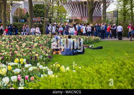 Keukenhof, Lisse, Netherlands - 18 April 2019: The view of different corners of the Keukenhof park, the worlds largest flower and tulip garden park