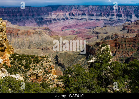 View from the North Rim of the Colorado River winding through the Grand Canyon - Stock Photo