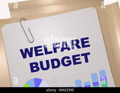 3D illustration of WELFARE BUDGET title on business document - Stock Photo