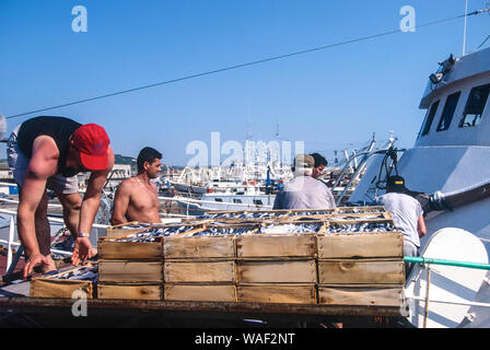 Italy Marche San Benedetto del Tronto - fishing port - Stock Photo