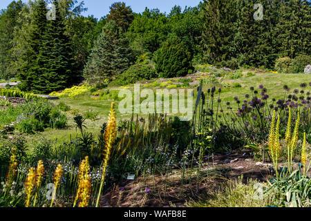 Beautiful landscape design in the Botanical garden of Tallinn, Estonia
