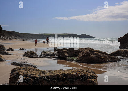 Rame Head in the distance while dog walkers exercise their pets on Tregonhawke Beach, Whitsand Bay, Rame, Cornwall - Stock Photo