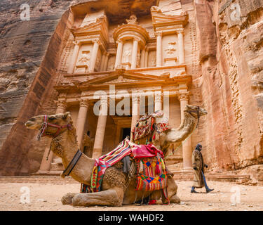 Petra, Jordan, 04 April 2019. Spectacular view of two beautiful camels in front of Al Khazneh (The Treasury) while a bedouin is walking behind them. - Stock Photo