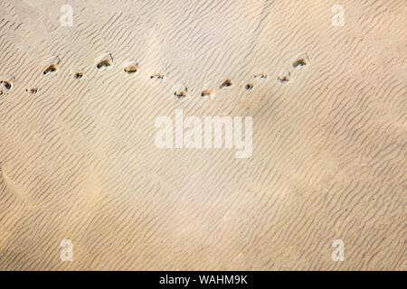 top aerial view of footsteps footprints on sand dunes in the desert - Stock Photo