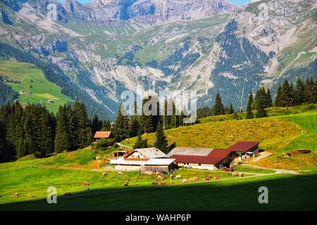 Switzerland, Switzerland, China. 21st Aug, 2019. Switzerland, With its picturesque scenery, Switzerland is the most suitable country to describe.As a world park worthy of the name, here you can not only revel in the magnificent nature, but also experience the true ideal of life.(photo taken in August 2017) Credit: SIPA Asia/ZUMA Wire/Alamy Live News - Stock Photo