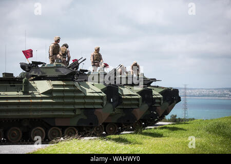 U.S. Marines with 4th Marine Regiment, 3rd Marine Division, conduct assault amphibious vehicle crew-served weapons training on Camp Hansen, Okinawa, Japan, Aug. 20, 2019. The company traversed more than 22 kilometers over land and sea, the longest trek of any AAV unit in Okinawa in the past 20 years, to get from the unit location to the live fire range. Continuous amphibious assault training is designed to maximize the Marine Corps' combat skills and the unit's readiness for future operations within the region. (U.S. Marine Corps photo by Cpl. Josue Marquez) - Stock Photo
