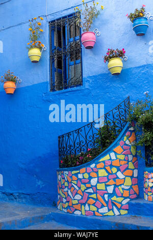 Africa, Morocco, Chefchaouen. Colorful house exterior. Credit as: Bill Young / Jaynes Gallery / DanitaDelimont.com - Stock Photo