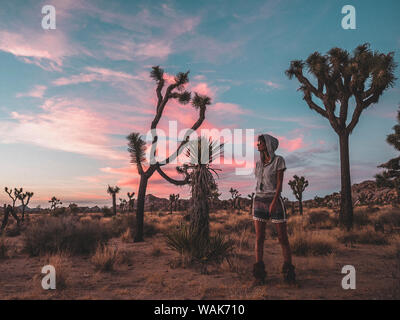 USA, California, Joshua Tree National Park. Young woman in hoodie standing amongst Joshua trees during dramatic sunset. - Stock Photo