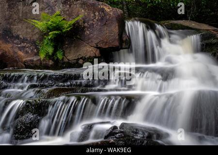 USA, West Virginia, Blackwater Falls State Park. Stream cascade. Credit as: Jay O'Brien / Jaynes Gallery / DanitaDelimont.com - Stock Photo