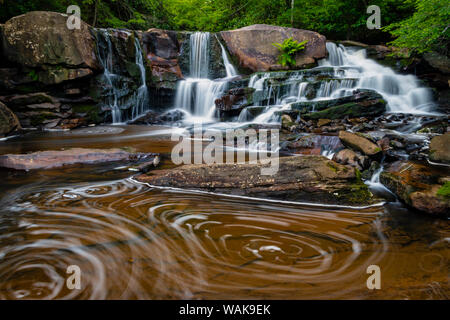 USA, West Virginia, Blackwater Falls State Park. Stream cascade and pool eddy. Credit as: Jay O'Brien / Jaynes Gallery / DanitaDelimont.com - Stock Photo