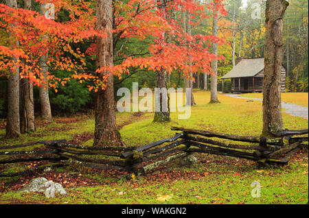 USA, Tennessee. Historic Carter Shields Cabin in Cades Cove. - Stock Photo