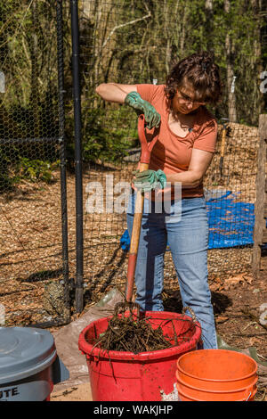 Issaquah, Washington State, USA. Woman mixing an equal mix of 'greens' and 'browns', with enough water to resemble a damp sponge, in a compost bucket. (MR, PR) - Stock Photo