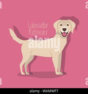 cute labrador retriever dog pet character - Stock Photo