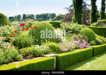 Mixed berbaceous border in an English garden in June with box hedging and grass lawn set in a Cotswold landscape - Stock Photo