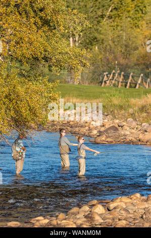 Three women fishing along the Big Thompson River in Estes Park, Colorado - Stock Photo