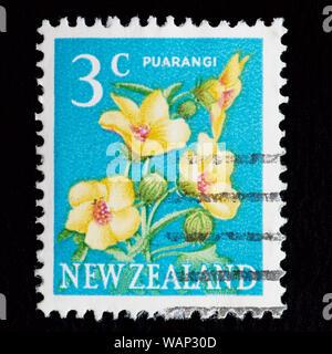 New Zealand Postage Stamp - Venice Mallow (Hibiscus trionum) Puarangi - Stock Photo