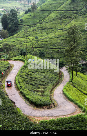 Tuk Tuk driving on a curvy road in tea plantage, Nuwara Ellia, Sri Lanka, Ceylon - Stock Photo