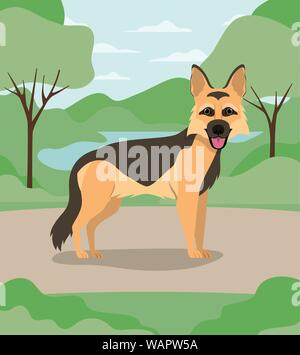 cute german shepherd dog pet in the camp - Stock Photo