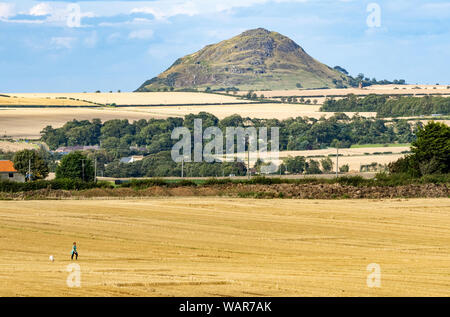 Berwick Law, East Lothian, Scotland, UK. - Stock Photo