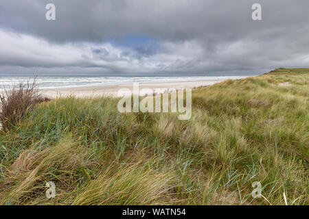 View from the dunes at the beach on Juist, East Frisian Islands, Germany. - Stock Photo