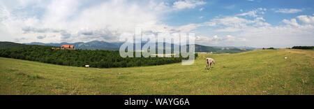 The valley in Caucasian Mountains, Azerbaijan - Stock Photo
