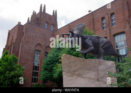 Yale Peabody Museum of Natural History, 170 Whitney Avenue, New Haven, CT - Stock Photo