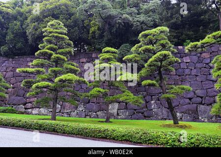 Views from around the ancient Kyoto Gosho Imperial Royal Palace in Tokyo Japan including paths, moat, bridge, gardens and trees. Asia. Stock Photo