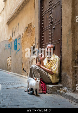 Old man and a stray cat in the medina.  Fez - Stock Photo