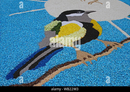 flower petals, grains, rice, beans and seeds making a pattern of a jay on a road in the village of Castelraimondo in Italy to celebrate Corpus Christi - Stock Photo