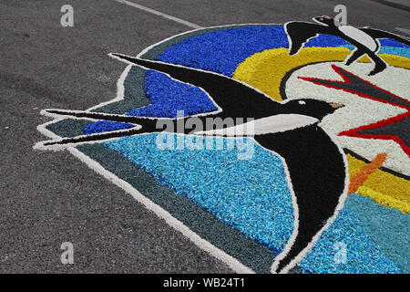 flower petals, grains, rice, beans and seeds making a pattern of a swallow on a road in the village of Castelraimondo to celebrate Corpus Christi - Stock Photo