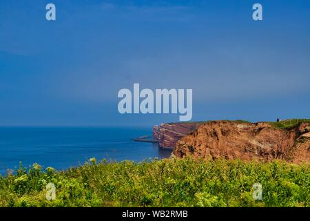 The Coastline of Heligoland - blue sky and blue north sea - green flower in front - Stock Photo