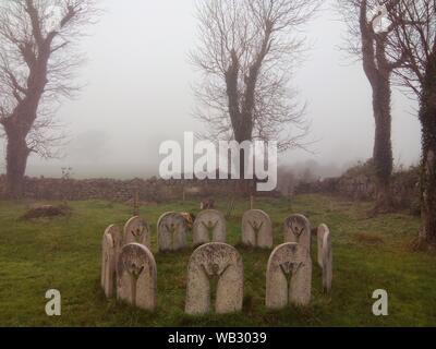 Irish Cemetery - Stock Photo