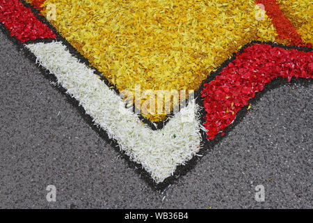 flower petals, grains, rice, beans and seeds with an abstract pattern on a road in the village of Castelraimondo in Italy to celebrate Corpus Christi - Stock Photo