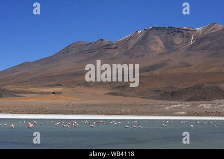 Salar de Uyuni, amid the Andes in southwest Bolivia - Stock Photo