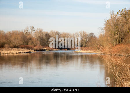 Odra river with trees around near Bohumin town on czech-polish borders during beautiful winter day - Stock Photo