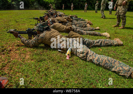 190822-N-TP834-1019  SANTA RITA, Guam (Aug. 22, 2019) Marines assigned to Force Reconnaissance Company, III Marine Expeditionary Force (MEF) and Marines assigned to III MEF Explosive Ordnance Disposal 1st Platoon, lay in the prone position while zeroing their sights during a weapons familiarization live-fire demonstration as part of Exercise HYDRACRAB. HYDRACRAB is quadrilateral exercise conducted by forces from Australia, Canada, New Zealand, and U.S. naval forces. The purpose of this exercise is to prepare the participating Explosive Ordnance Disposal (EOD) forces to operate as an integrated - Stock Photo