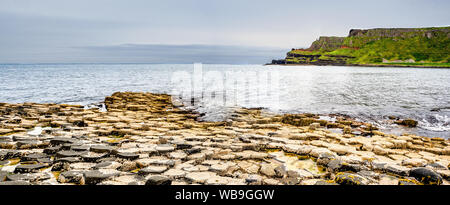 Giant's Causeway,  Northern Ireland, UK. Panorama of unique hexagonal and pentagonal geological formations of volcanic basalt rocks, covered by barnac