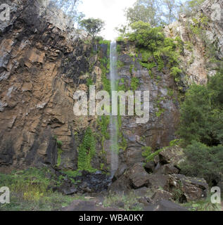 Queen Mary Falls (40 m), on Spring Creek, a tributary of the Condamine River. Main Range National Park, Queensland/New South Wales, Australia - Stock Photo