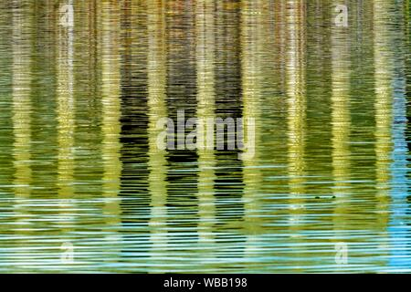 Abstract Background Reflection Lincoln Memorial Reflecting Pool Columns Monument Washington DC.