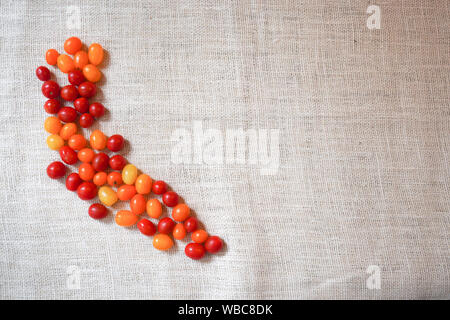 A pile of cherry tomatoes in the shape of California harvested from the garden on a rustic burlap background Stock Photo