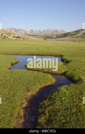 Streams and ponds, bog at Lac de Nino, France, Corsica, GR20 - Stock Photo