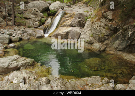 natural pool in Ruisseau de Manganello on GR20, forest of Venaco, France, Corsica, GR20 - Stock Photo