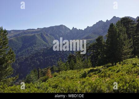 Punta dell'Oriente and Monte Renoso from GR20 near Bergeries de Cardo, France, Corsica, GR20 - Stock Photo